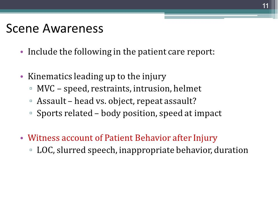 Scene Awareness Include the following in the patient care report: