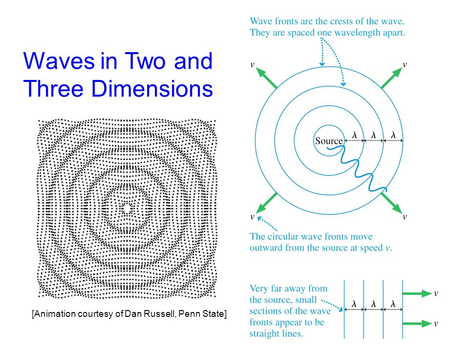 Waves in Two and Three Dimensions