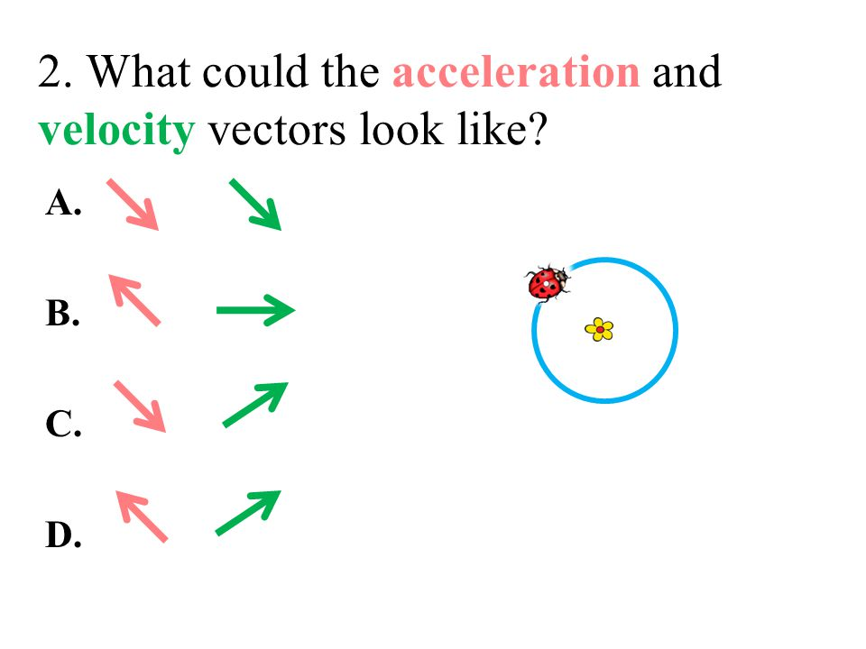 2. What could the acceleration and velocity vectors look like