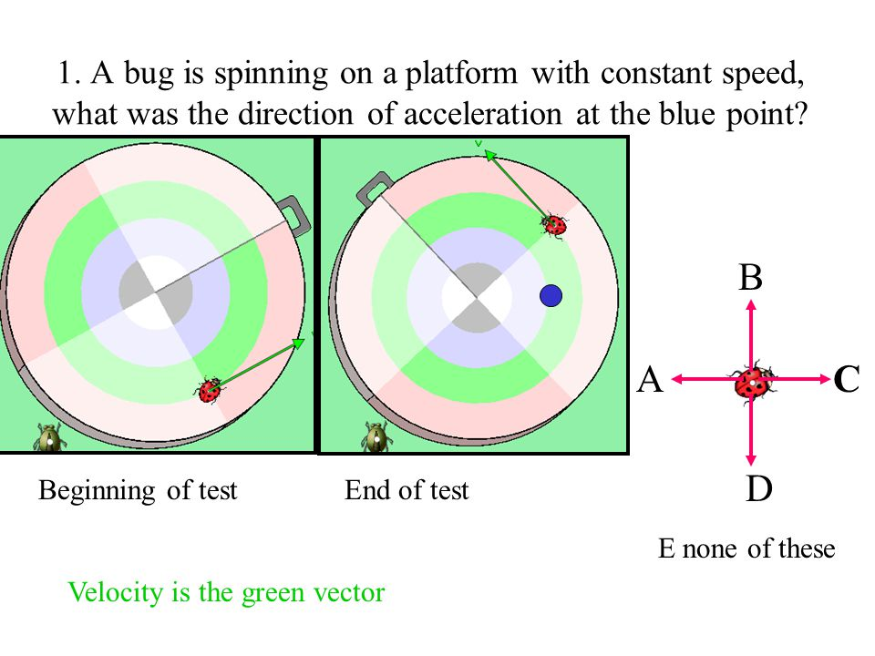 1. A bug is spinning on a platform with constant speed, what was the direction of acceleration at the blue point