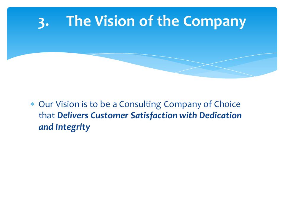 3. The Vision of the Company