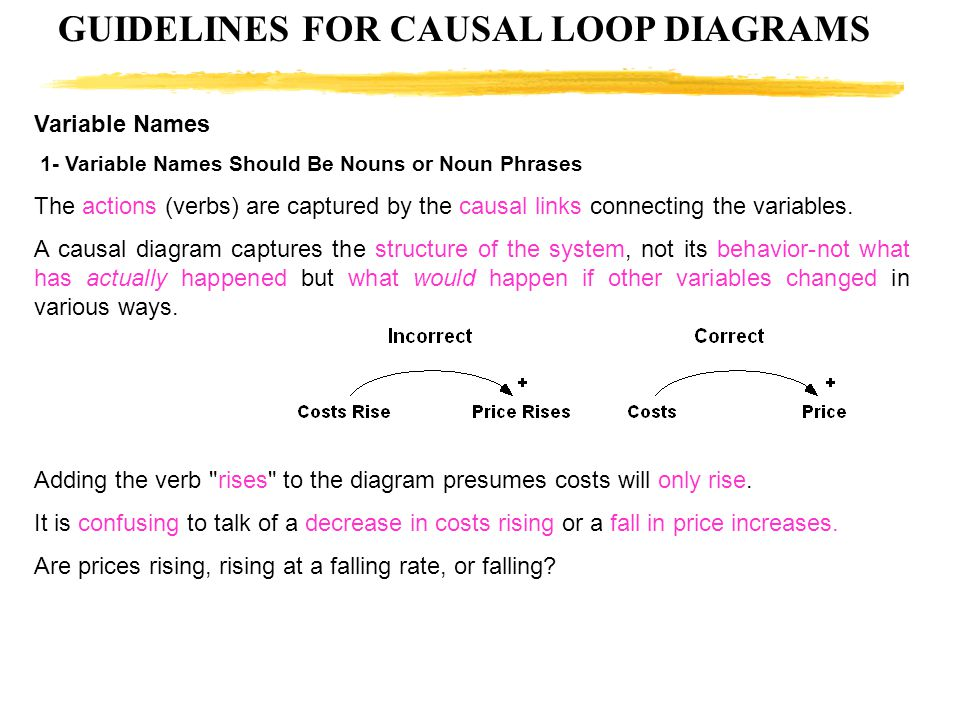 GUIDELINES FOR CAUSAL LOOP DIAGRAMS