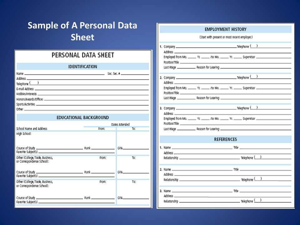 Sample of A Personal Data Sheet