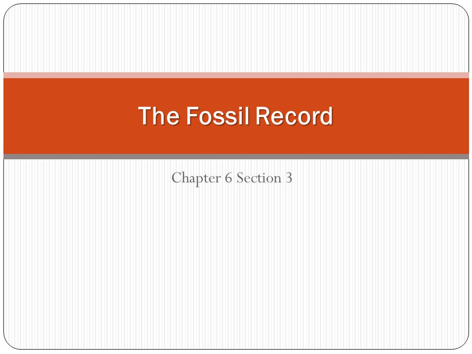 The Fossil Record Chapter 6 Section 3