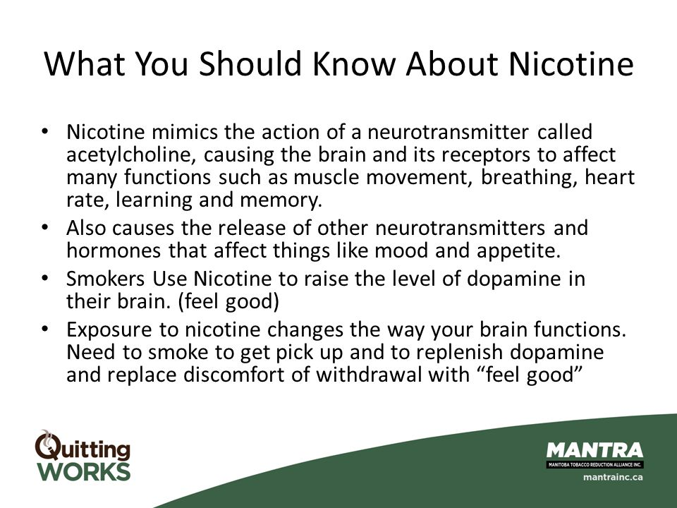 What You Should Know About Nicotine