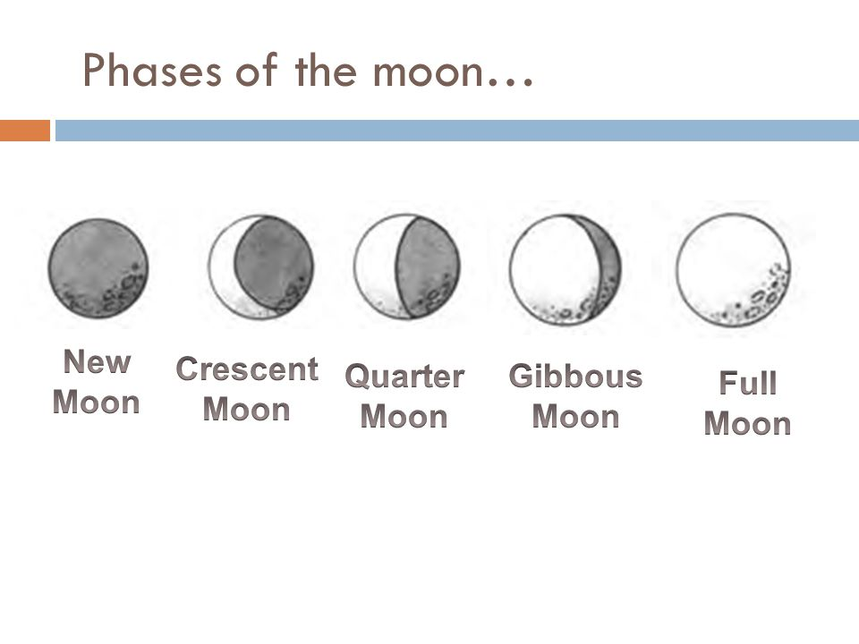 Phases of the moon… New Moon Crescent Moon Quarter Moon Gibbous Moon