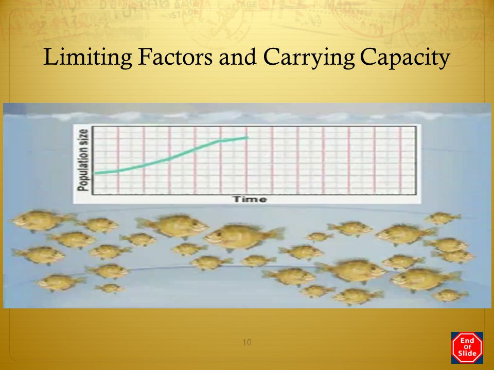 Limiting Factors and Carrying Capacity