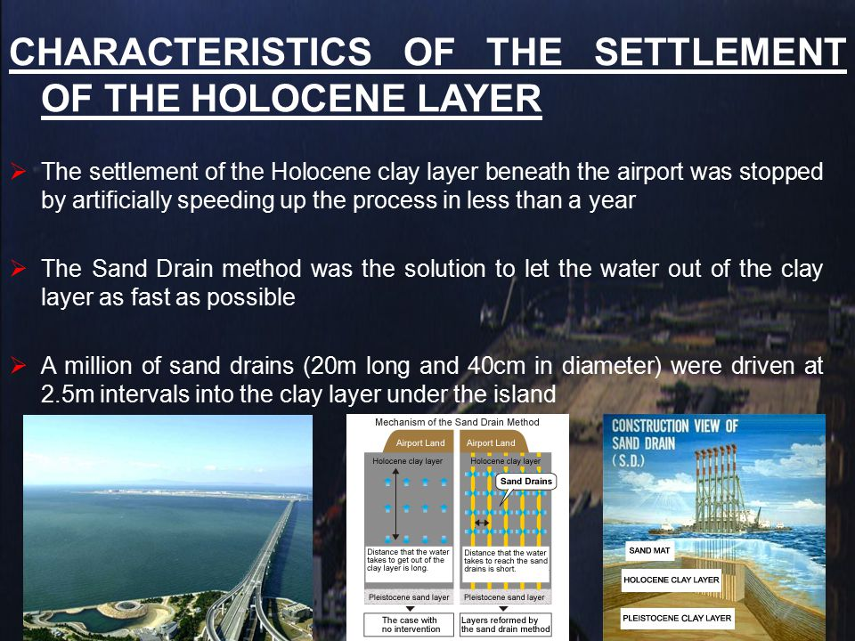CHARACTERISTICS OF THE SETTLEMENT OF THE HOLOCENE LAYER