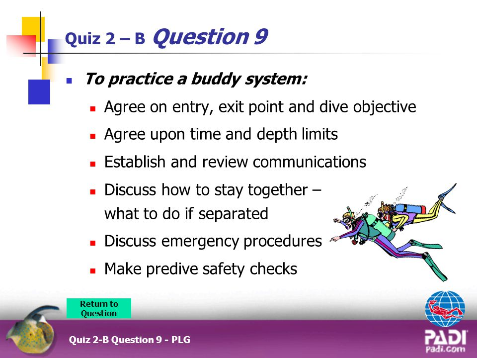 To practice a buddy system: