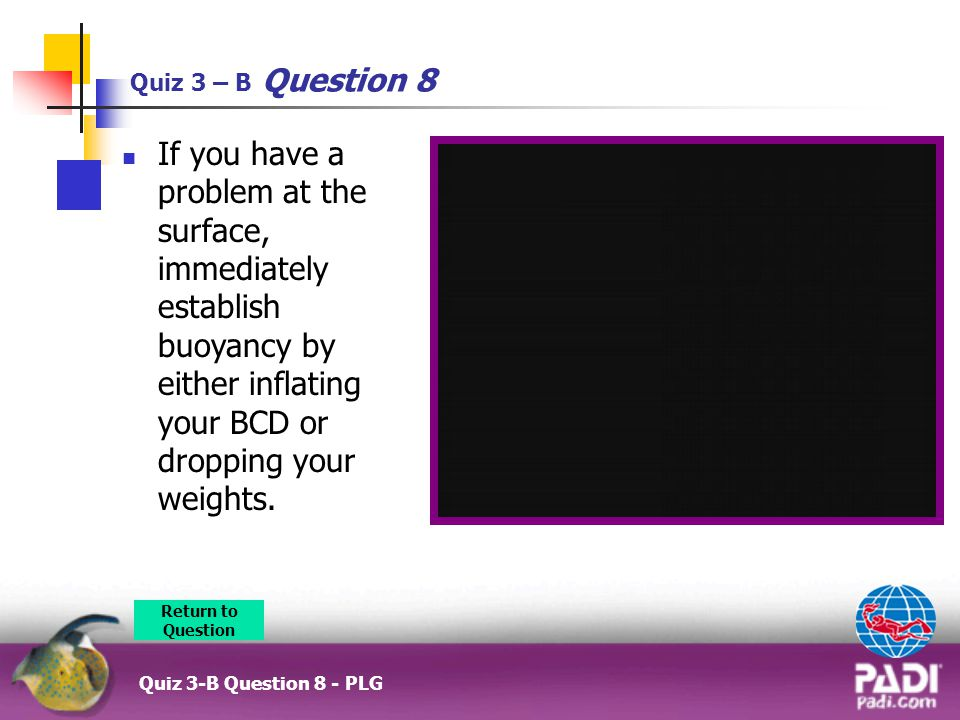 Quiz 3 – B Question 8 If you have a problem at the surface, immediately establish buoyancy by either inflating your BCD or dropping your weights.