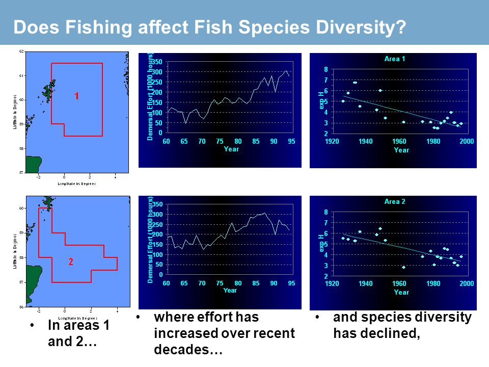 Does Fishing affect Fish Species Diversity