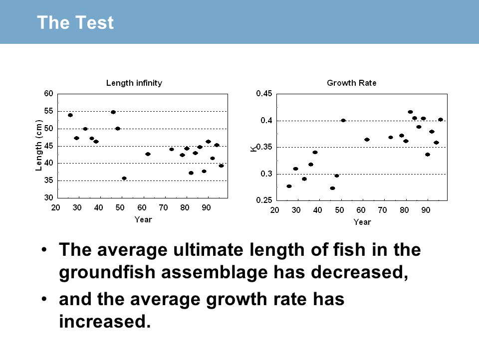The Test The average ultimate length of fish in the groundfish assemblage has decreased, and the average growth rate has increased.