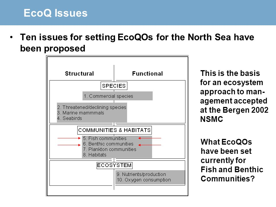 EcoQ Issues Ten issues for setting EcoQOs for the North Sea have been proposed. This is the basis.