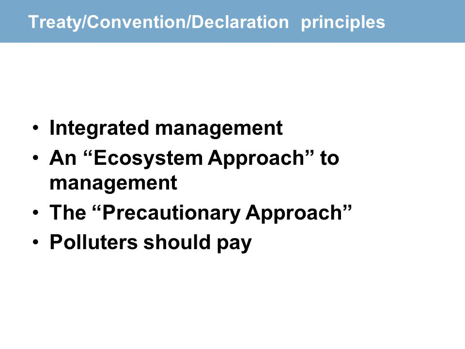 Treaty/Convention/Declaration principles