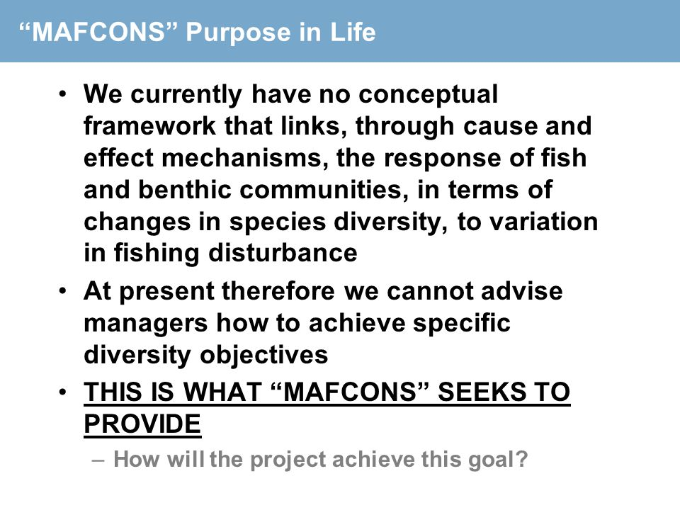 MAFCONS Purpose in Life