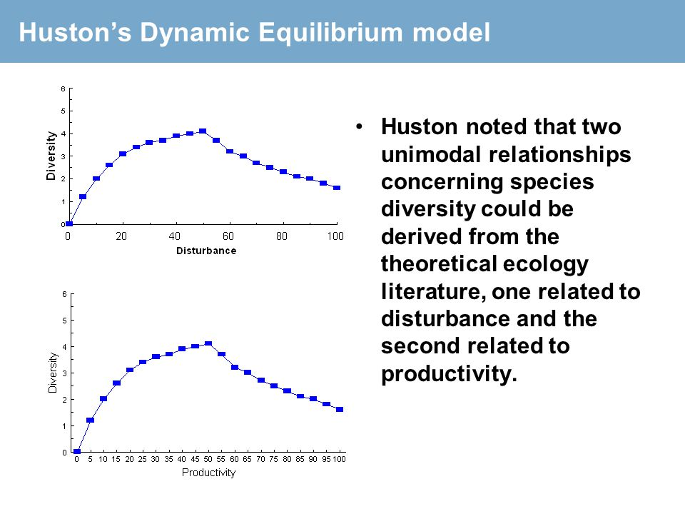 Huston's Dynamic Equilibrium model