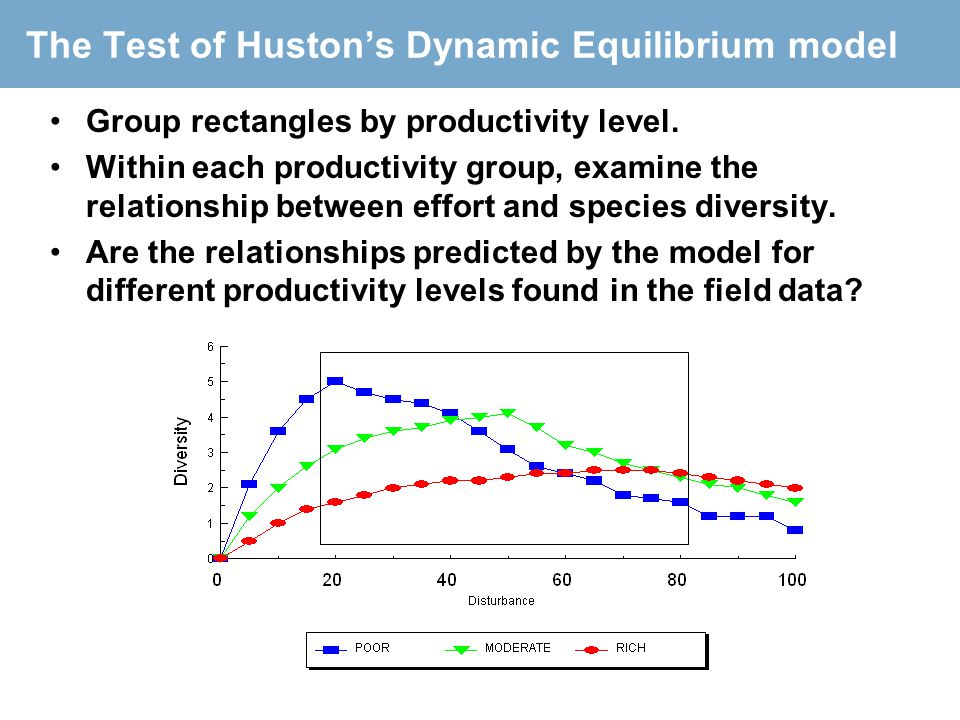 The Test of Huston's Dynamic Equilibrium model