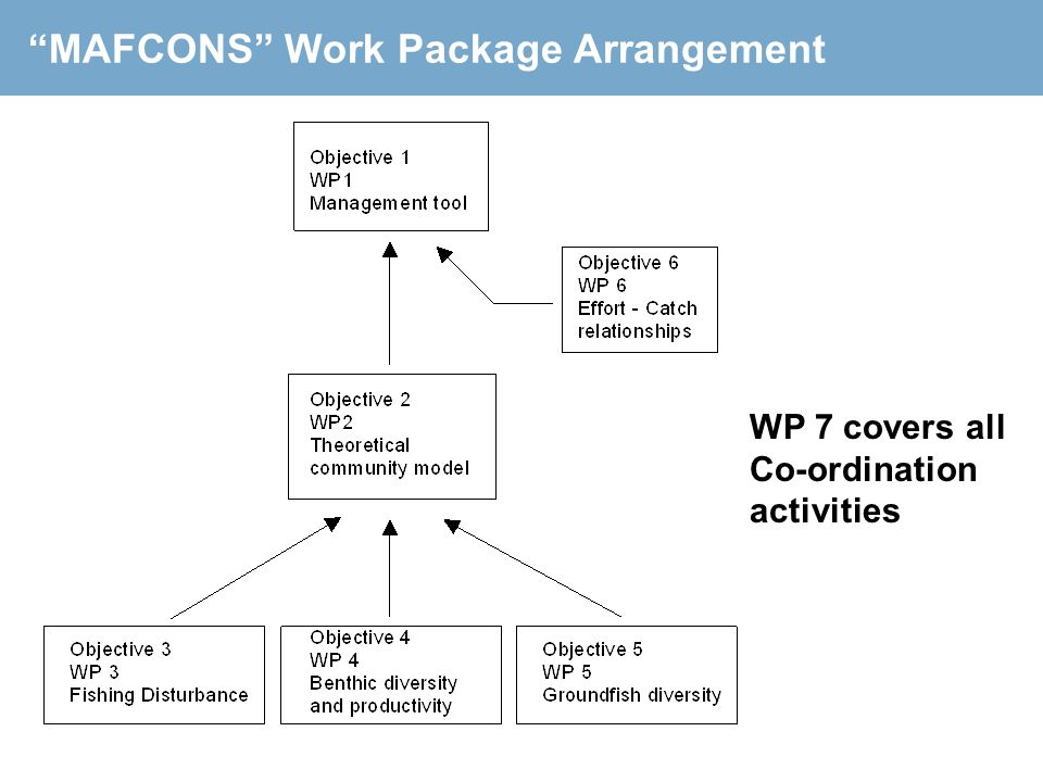 MAFCONS Work Package Arrangement