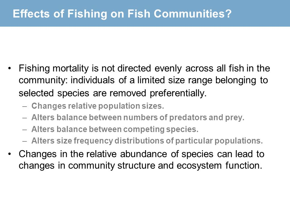 Effects of Fishing on Fish Communities