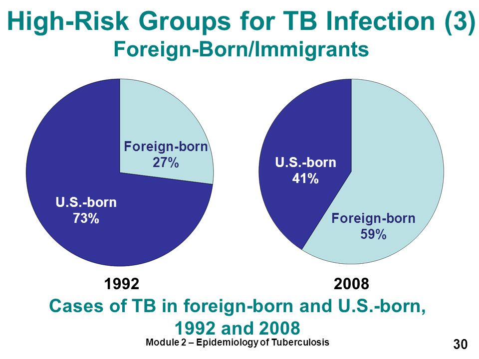 High-Risk Groups for TB Infection (3) Foreign-Born/Immigrants