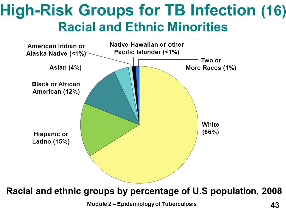 High-Risk Groups for TB Infection (16) Racial and Ethnic Minorities