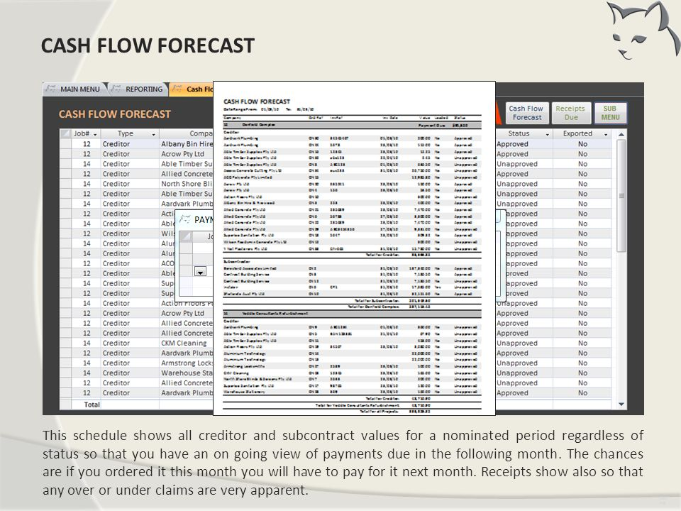 Cash Flow Forecast CASH FLOW FORECAST