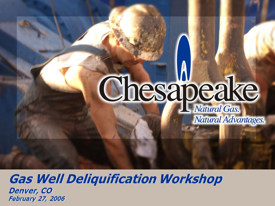 Gas Well Deliquification Workshop