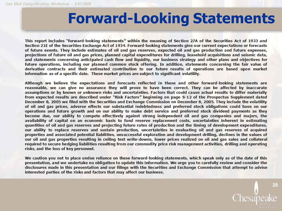 Forward-Looking Statements