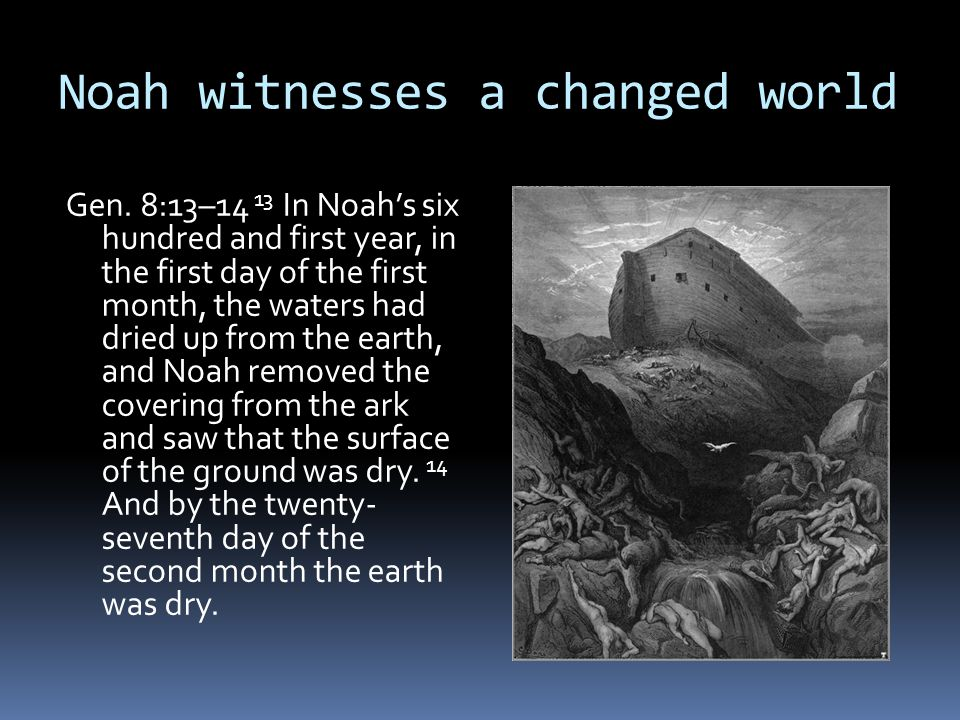 Noah witnesses a changed world