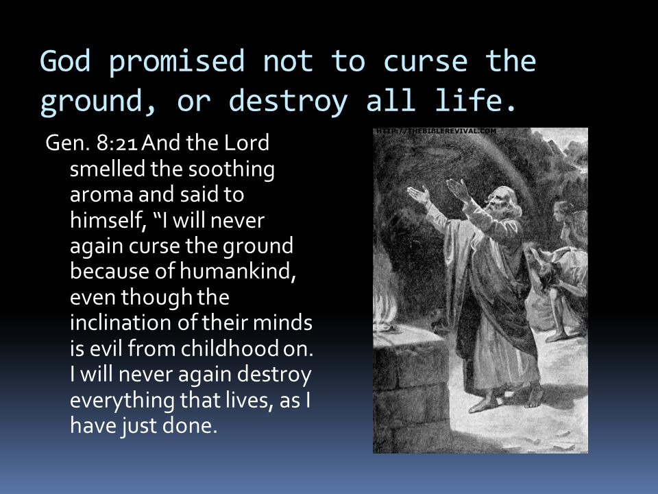 God promised not to curse the ground, or destroy all life.
