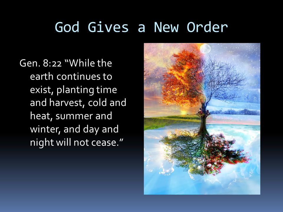 God Gives a New Order