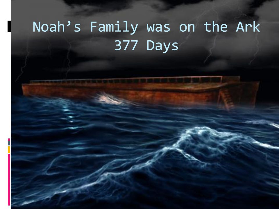 Noah's Family was on the Ark 377 Days