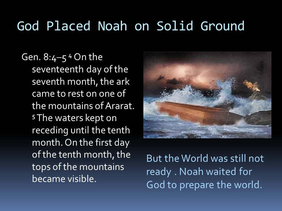 God Placed Noah on Solid Ground