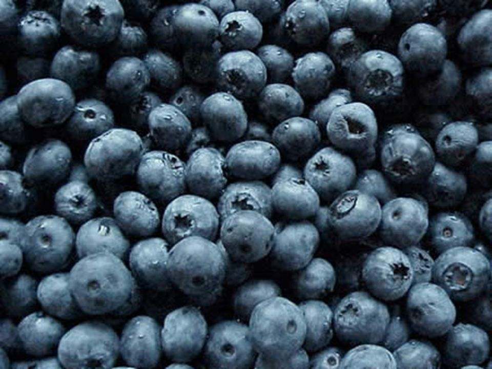Antioxidants Antioxidants also bind to free radicals, making them harmless to the body.