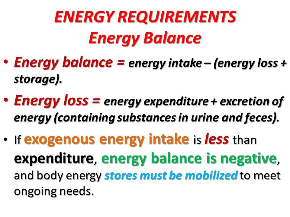 ENERGY REQUIREMENTS Energy Balance
