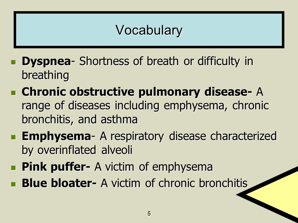 Vocabulary Dyspnea- Shortness of breath or difficulty in breathing