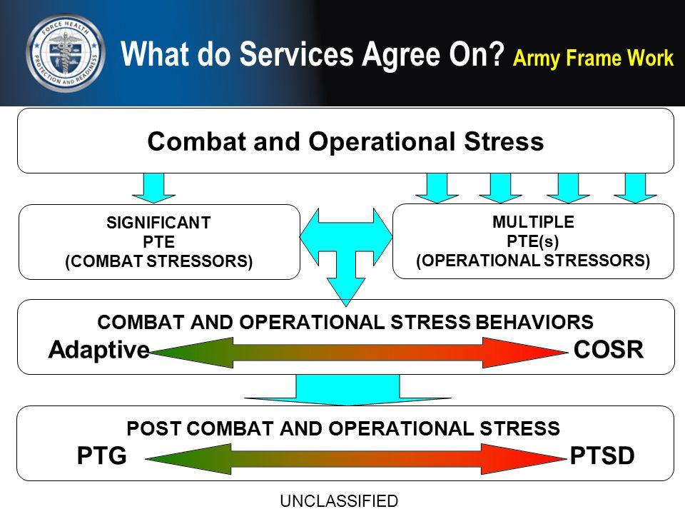 Combat Stress Behaviors (FM 4-02.51)