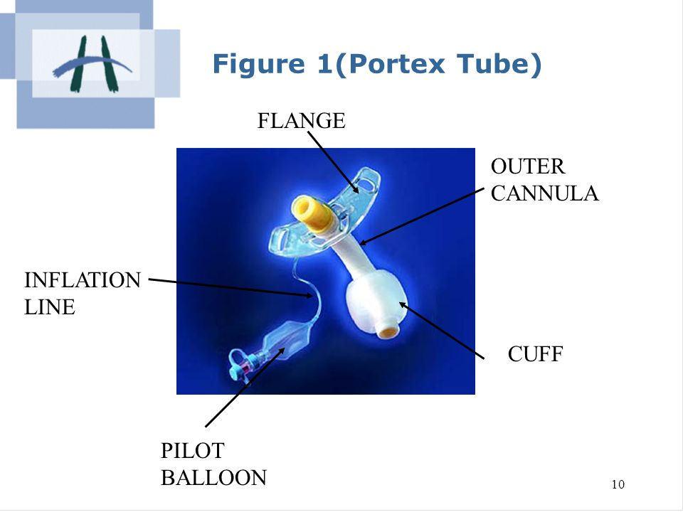 Figure 1(Portex Tube) FLANGE OUTER CANNULA INFLATION LINE CUFF