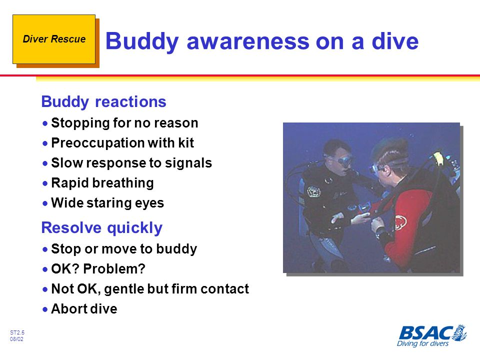 Buddy awareness on a dive