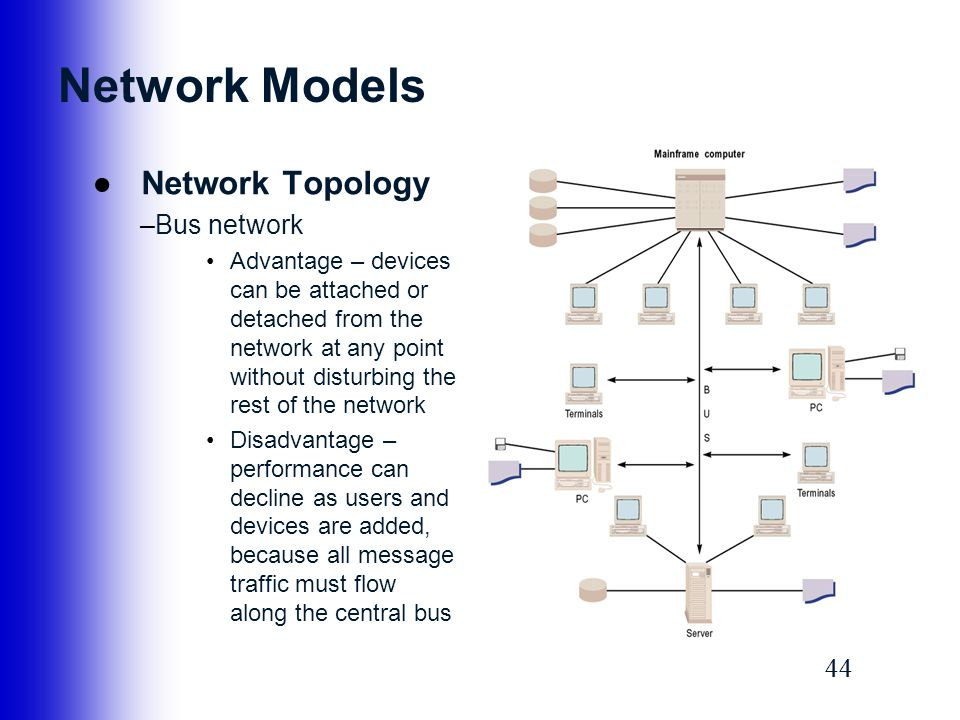Network Models Network Topology Bus network