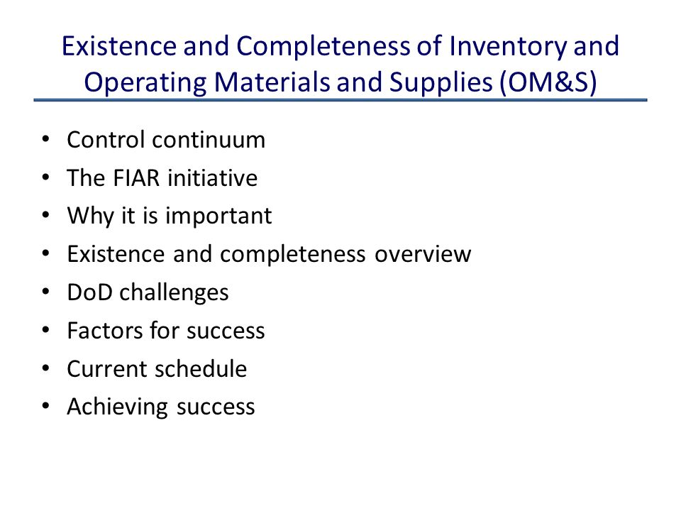 Existence and Completeness of Inventory and Operating Materials and Supplies (OM&S)