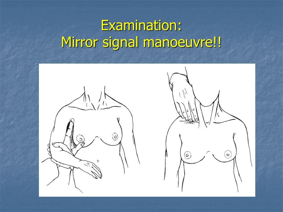 Examination: Mirror signal manoeuvre!!