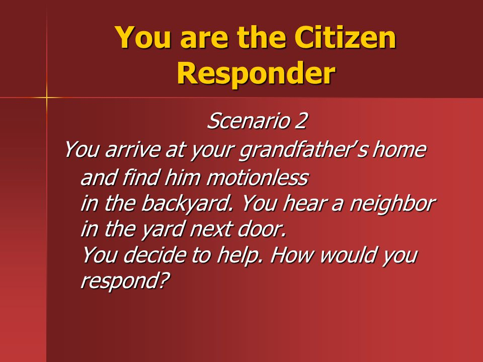 You are the Citizen Responder