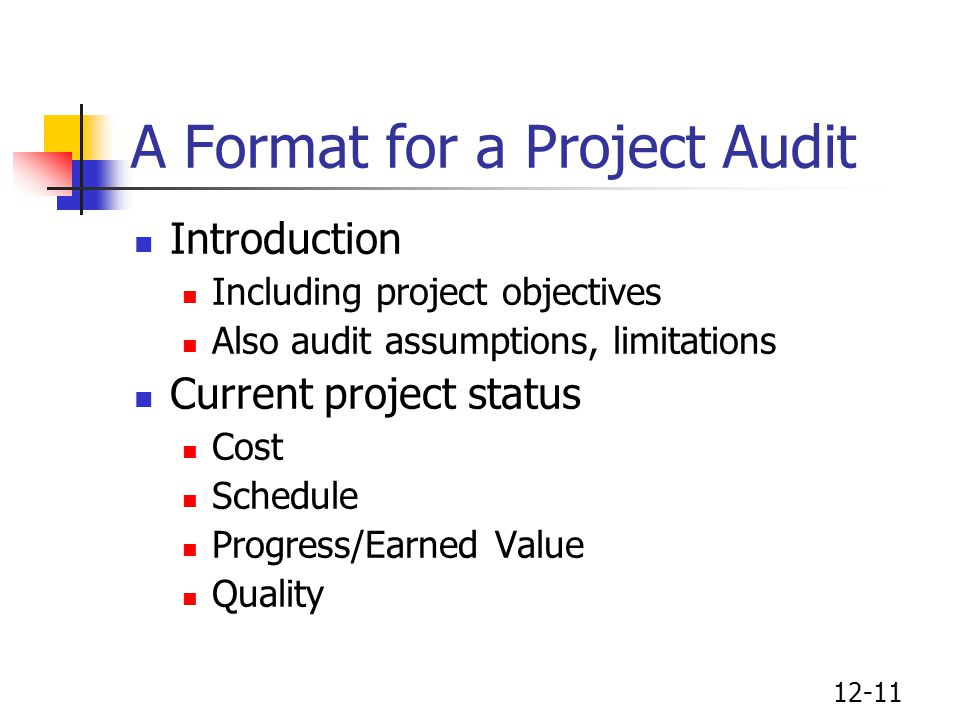A Format for a Project Audit