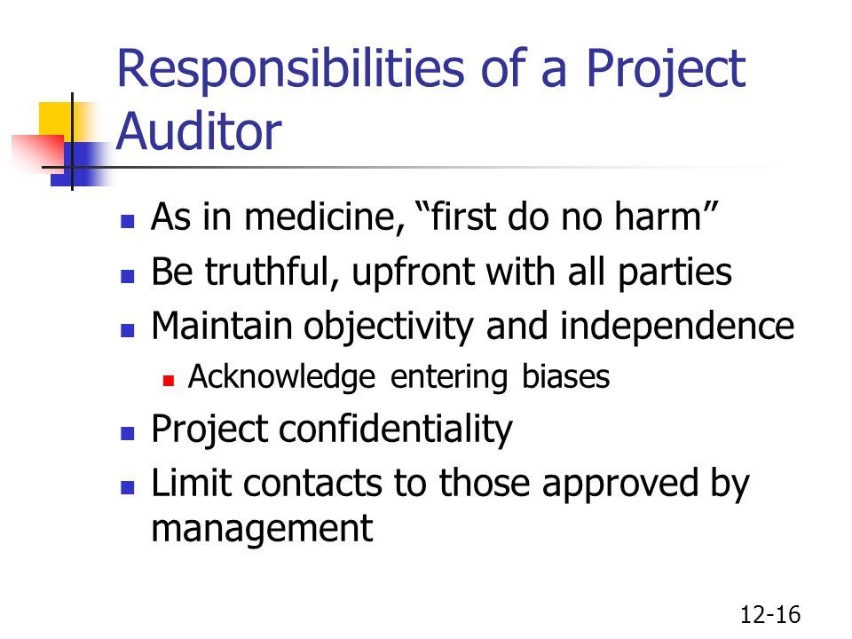 Responsibilities of a Project Auditor
