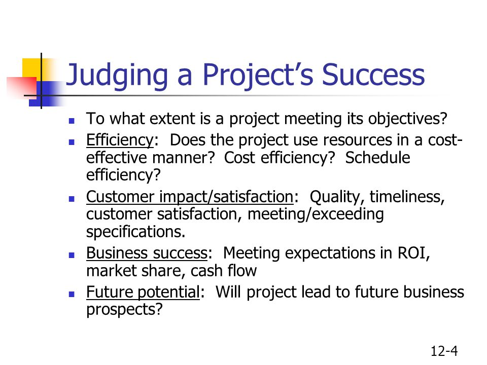 Judging a Project's Success