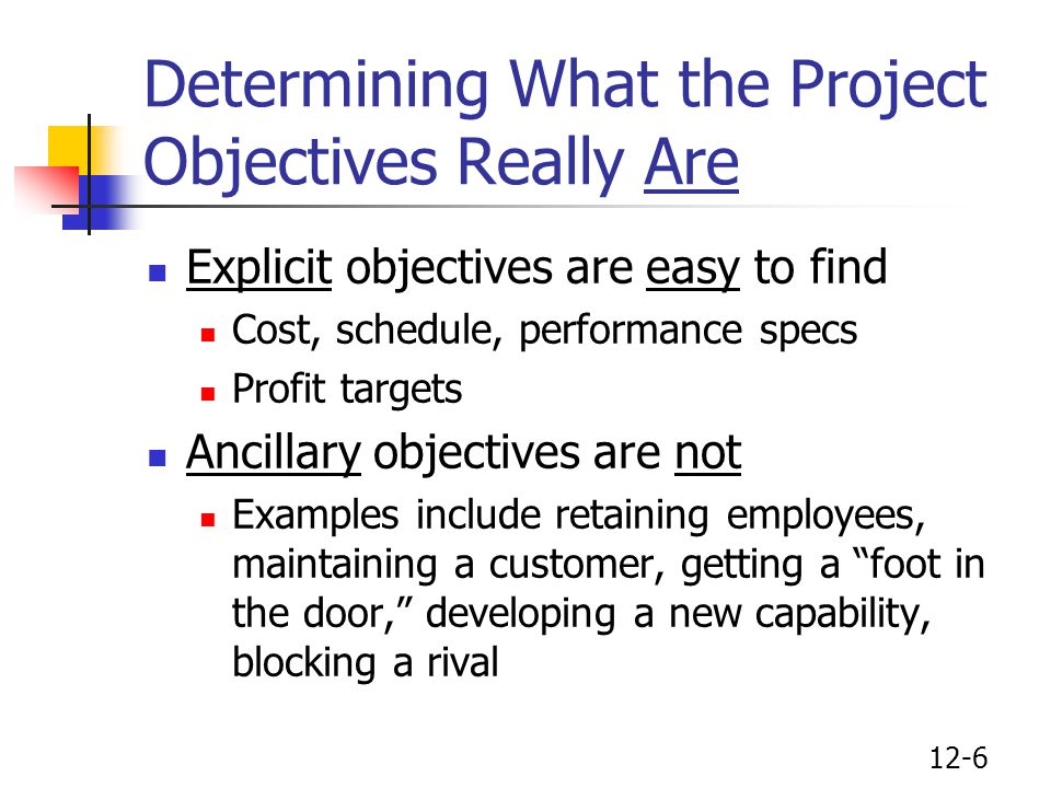 Determining What the Project Objectives Really Are