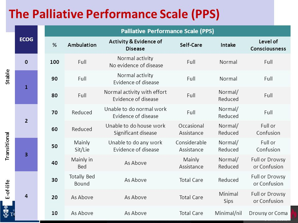 The Palliative Performance Scale (PPS)