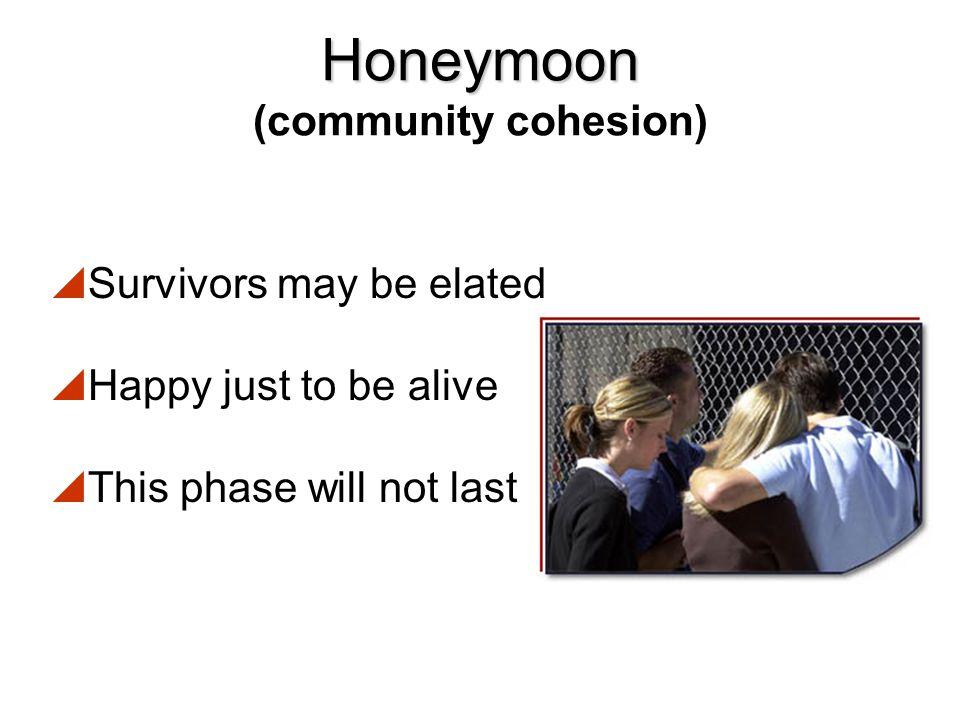 Honeymoon (community cohesion)