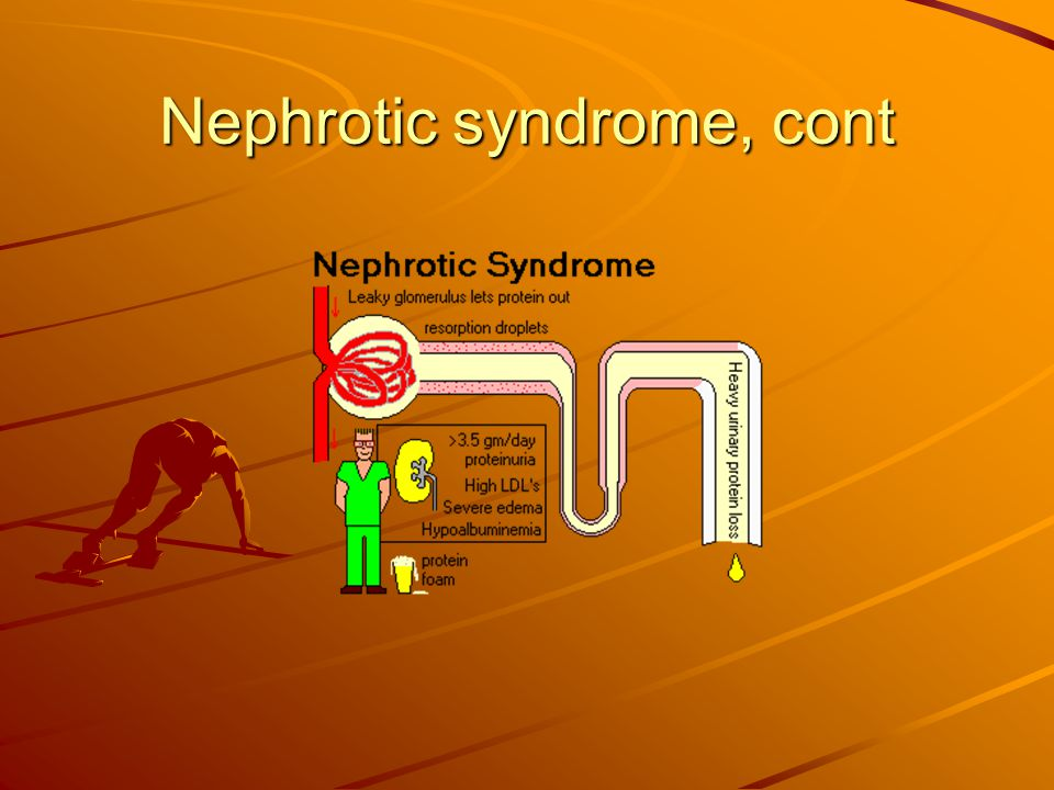 Nephrotic syndrome, cont